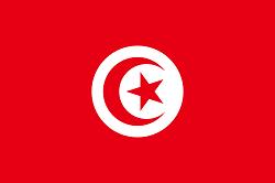 Meteologix Tunesien